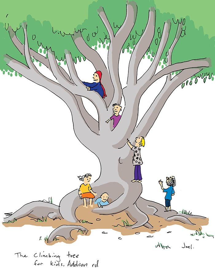 Kid Climbing Tree Climbing Tree For Kids