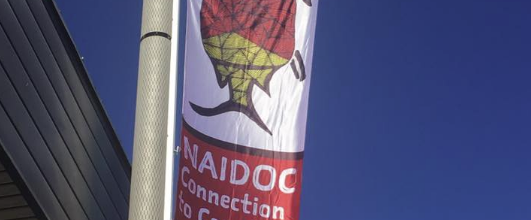 Graphic Design: NAIDOC Connection to Country and Culture