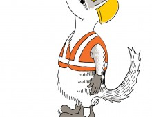 A numbat in a hardhat